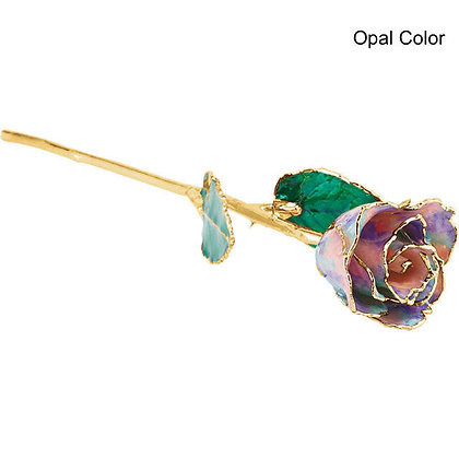 24K Gold Plated 12 Inch Lacquered Rose: 13 Colors With Optional Acrylic Vase