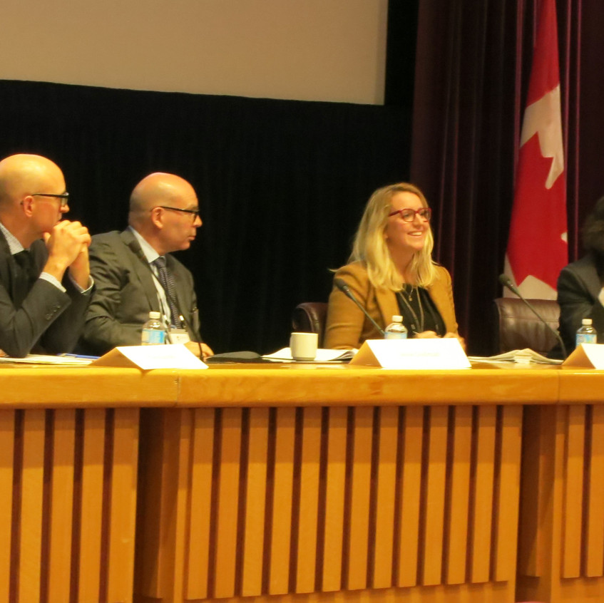 Panel on preparing and examining witnesses