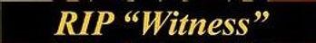 witness banner.jpg