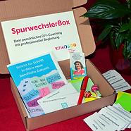 SpurwechslerBox berufliche Zukunft.png