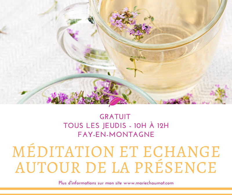 Méditation satsang.png