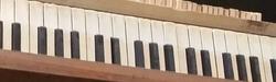 Square Grand Piano Action Molalla