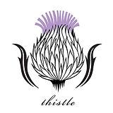 Thistle-e1504197100622.jpg