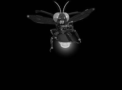 firefly_still camera_bw_sm.jpg