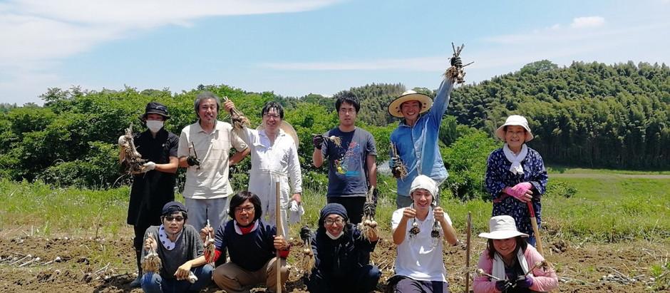 「援農プログラム」