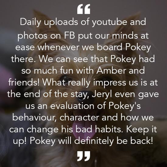 pokey.jpg