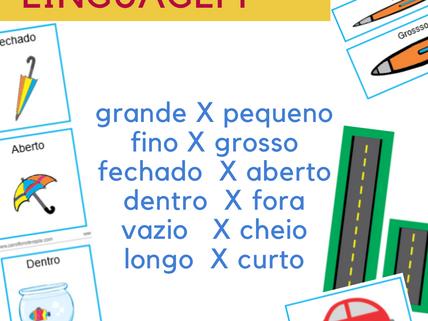 Fichas com conceitos de Linguagem