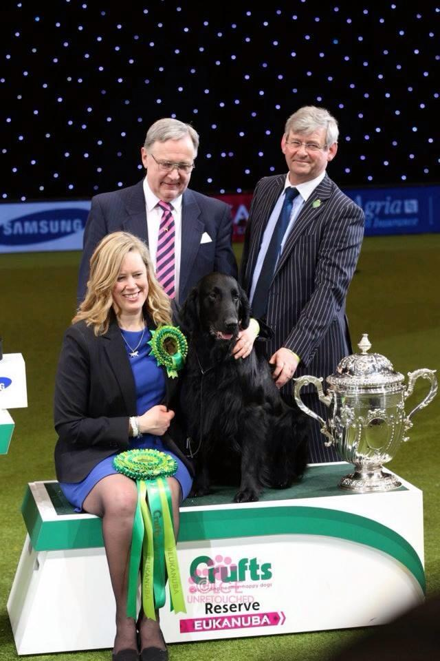 RBIS Crufts