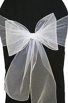 white organza sash.jpg