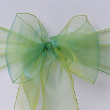 apple organza sash.jpg