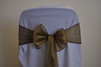 Antique Gold Organza Sash.jpeg