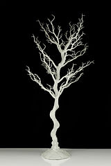100cm White Manzanita Tree.jpg