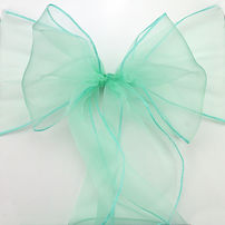 turquoise organza sash.jpg