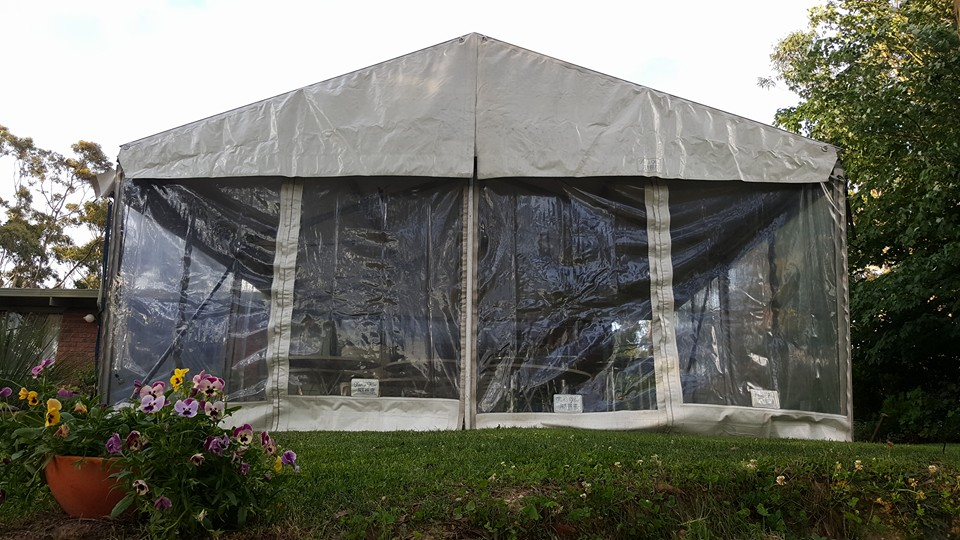 6 x 6m free standing structure.1