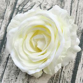 Rose Head.jpg