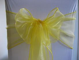 yellow organza sash.jpg