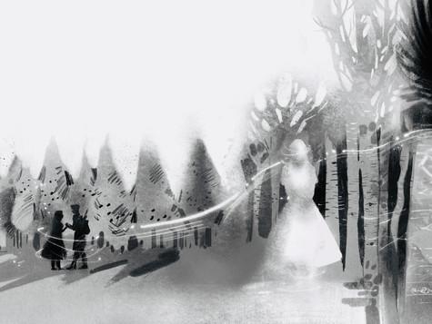 The Birch Woods1