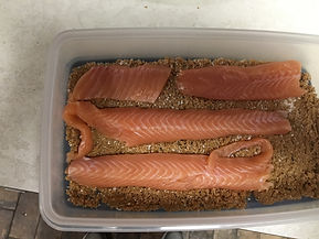 1st Layer of Fillets