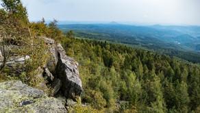 Z Krušných hor do Českého Švýcarska