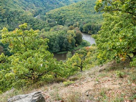 Národním parkem Podyjí v podzimních barvách