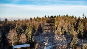 Český les sever z Rozvadova do Chebu
