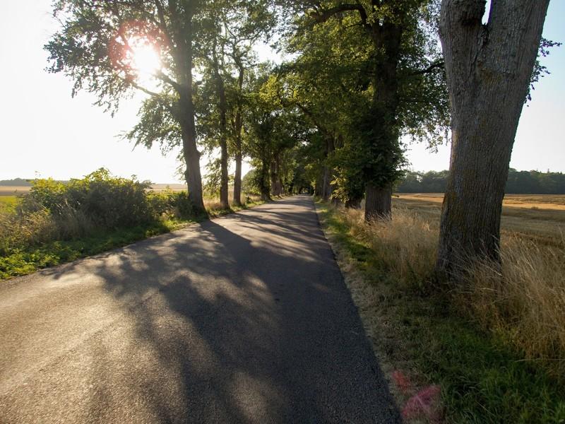 Cesta do Leby