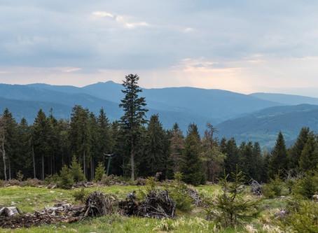 Za třemi horami a dvěma jezery od Šumavy k Českému lesu
