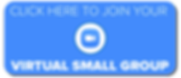 VSG WEB Button.png