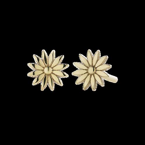 Meadowlark Stg Silver yellow gold plated Dazed Stud Earrings - studazgp