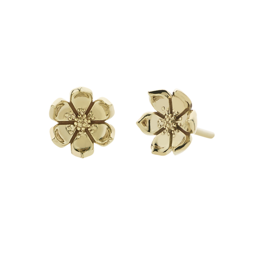 Meadowlark Stg Silver yellow gold plated Eden Stud Earrings - stuedngp