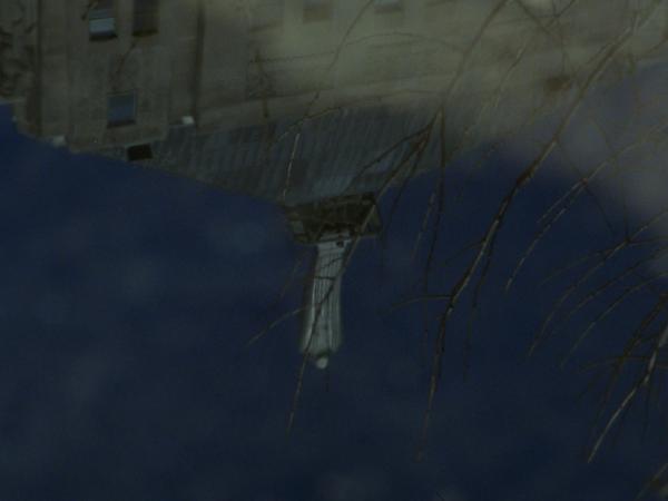 reflection1.tif