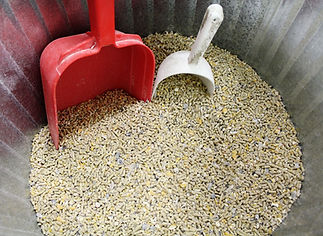 Bulk chicken feed