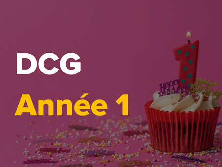 Quel est le programme de 1re année du DCG ?