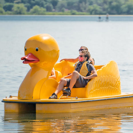 The DUCK Paddle Boat
