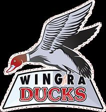 Wingra_Ducks_edited.png