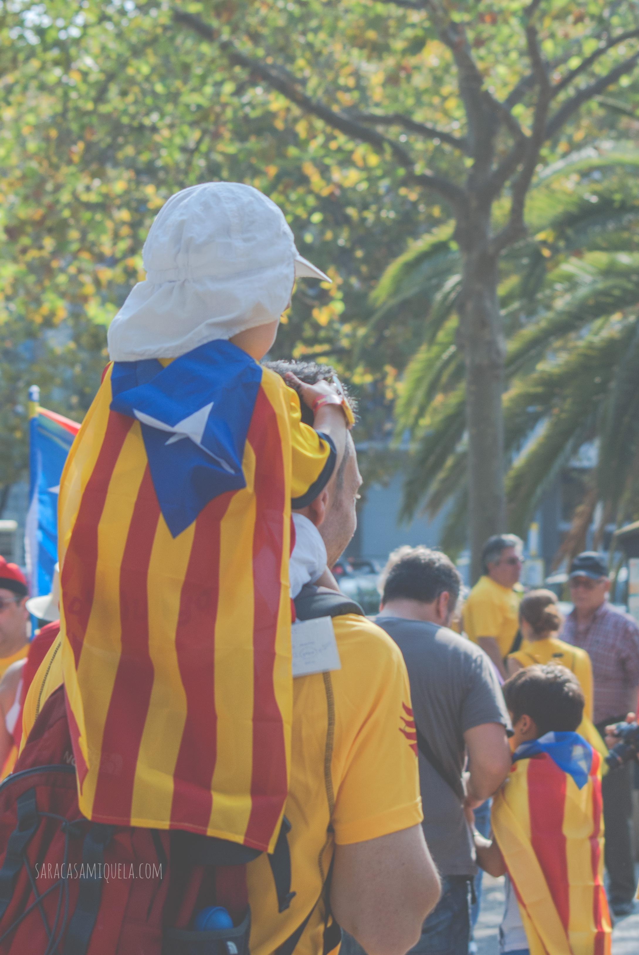 V Diada Nacional Catalunya