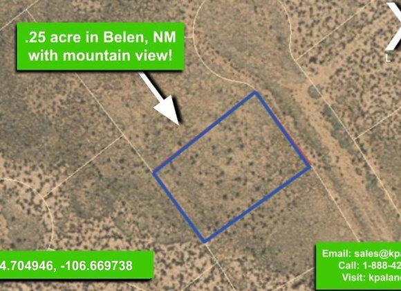 .25 #3 Acre Vacant lot in Belen, NM (APN:1-013-031-260-360-210310)