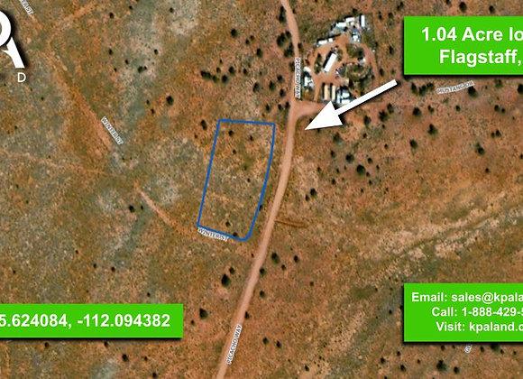 1.4 Acre Vacant Lot in Williams, AZ (APN: 501-28-103)
