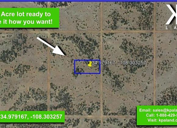 5.04 Acre Vacant Lot in Ramah, NM (APN: 2081050300190)