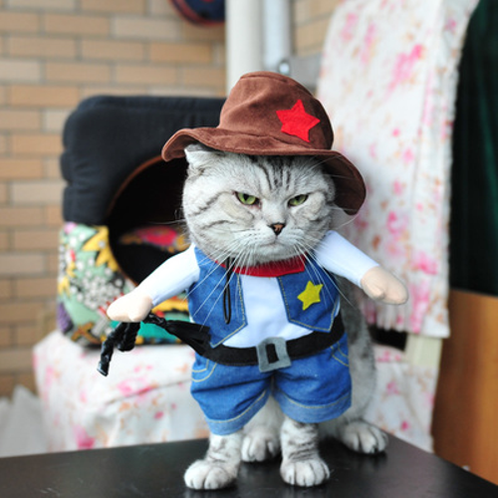 818b6d2fc84f9 Funny Cat Clothes Costume Sex Nurse Suit Clothing For Cat Cool Halloween  Costume. $ 14.00. Brand Name:IDEPET ...
