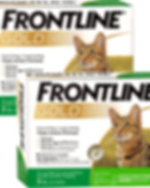 frontline-gold-for-cats-12-month-47.jpg