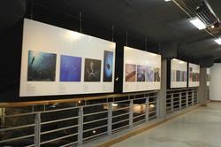 Hanging exhibition walls
