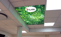Flash Ceiling Inserts