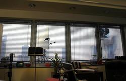 Window Frames