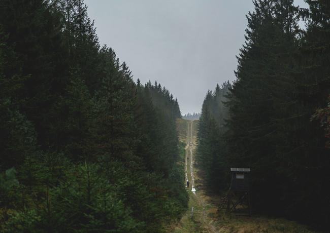 Bohemian-Border-Bash-Race-0395.JPG