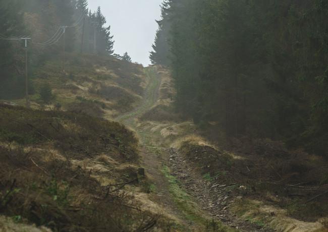 Bohemian-Border-Bash-Race-0345.JPG