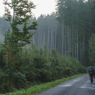 Bohemian-Border-Bash-Race-0798.JPG