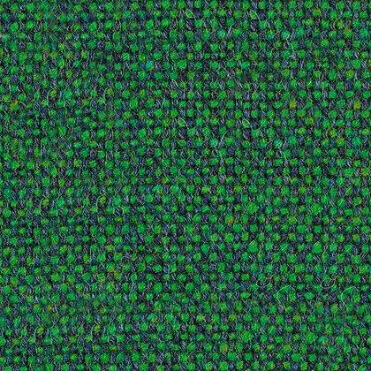 0907 Chameleon