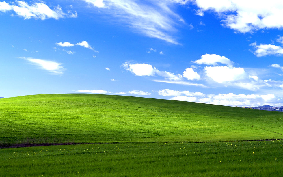 windows_xp_bliss.jpg