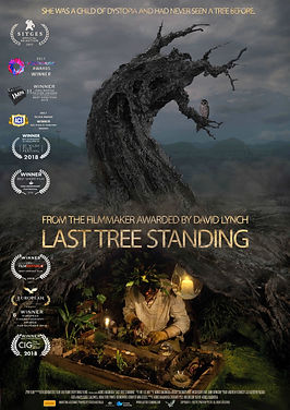 LAST TREE STANDING-POSTER 2019-1_LOWRES.